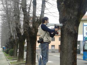 Stabilità degli alberi alberi Federico Simone Milano