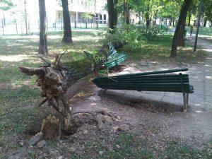 VTA schianto alberi su panchina