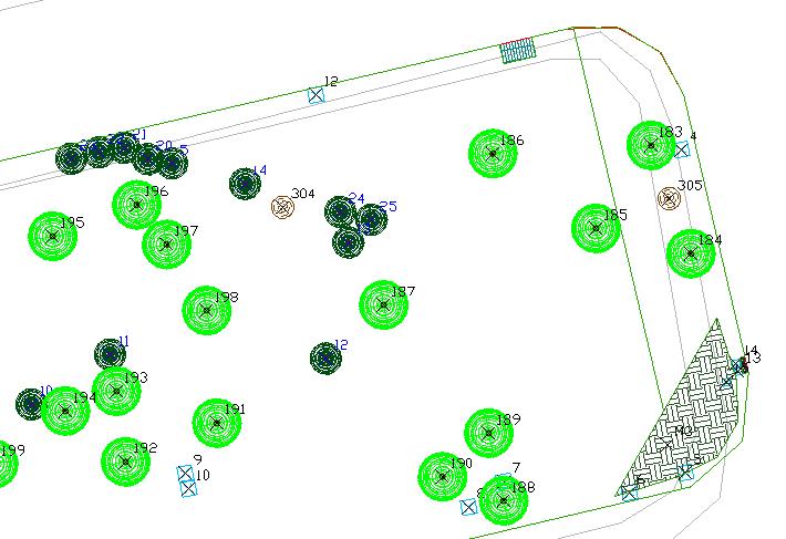 2015 04 11 122508 - Rilievi e censimenti del verde