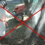 7.375 vie Diotti Quinto Romano Colla 4 150x150 - Novita nell'utilizzo dei prodotti fitosanitari in ambito urbano