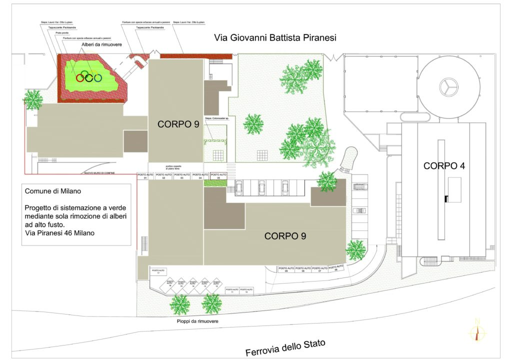 Progettazione Coni 1024x724 - Progettazione del verde
