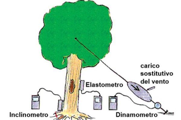 2018 11 05 131946 e1544813225825 600x400 - Pulling Test - prova di trazione controllata dell'albero