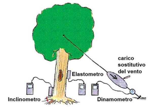 2018 11 05 131946 e1544813225825 600x425 - Pulling Test - prova di trazione controllata dell'albero