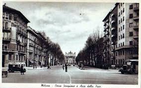 Corso sempione - La gestione degli alberi a Milanoe in altre città