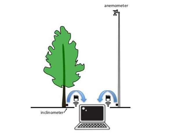 Dynaroot system - Gestire il Verde