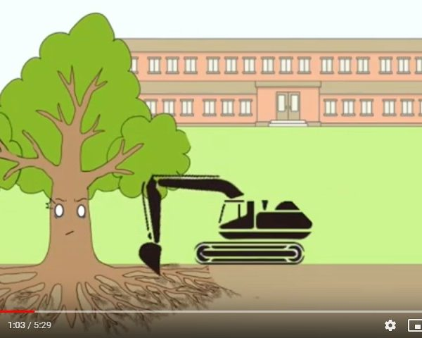 Video di arboricoltura cinese