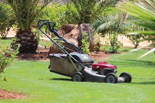 Per fare il giardiniere serve l'attestato di idoneità a norma di legge