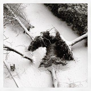 Aperto per neve
