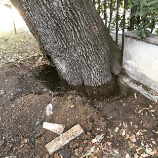 E niente abbiamo scavato mezzo metro ma qui la base non si vede ancora…